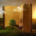 Buch in einer Landschaft